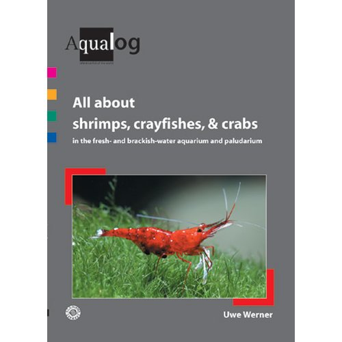 All about Shrimps, Crayfishes and Crabs