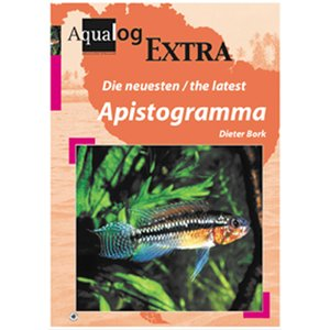 Die neuesten / The latest Apistogramma