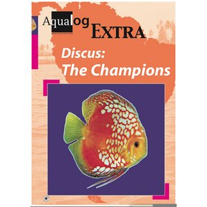 Discus: The Champions