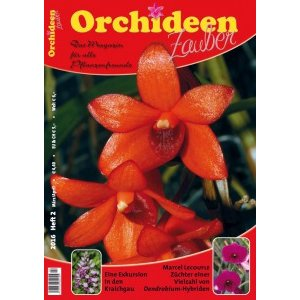 Orchideen Zauber 2 (März/April 2016)