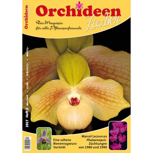 Orchideen Zauber 2  (März/April 2017)