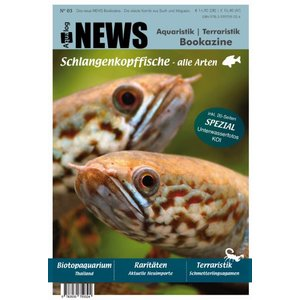 NEWS Bookazine Nr. 3 (Herbst 2017)