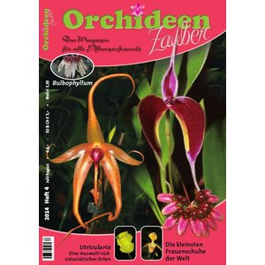 Orchideen Zauber 4 (Juli/August 2014)