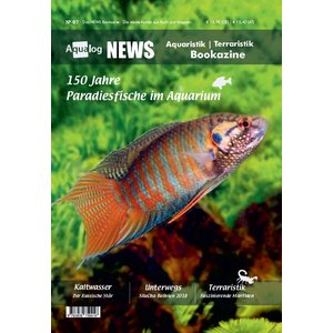NEWS Bookazine Nr. 7 (Herbst 2019)