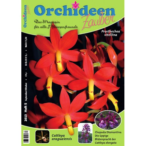 Orchideen Zauber 5 (September/Oktober 2013)